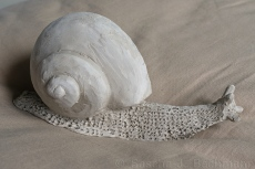 Snail Sculpture from Clay for Mould