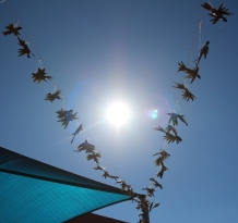 Doves flying in formation in the school yard